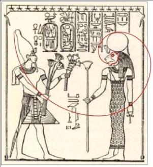 C:\Users\Utente\Pictures\1. The Snefru Gallery\the fibonacci spiral code\28. The Fibonacci's spiral on Ramses (1).jpg